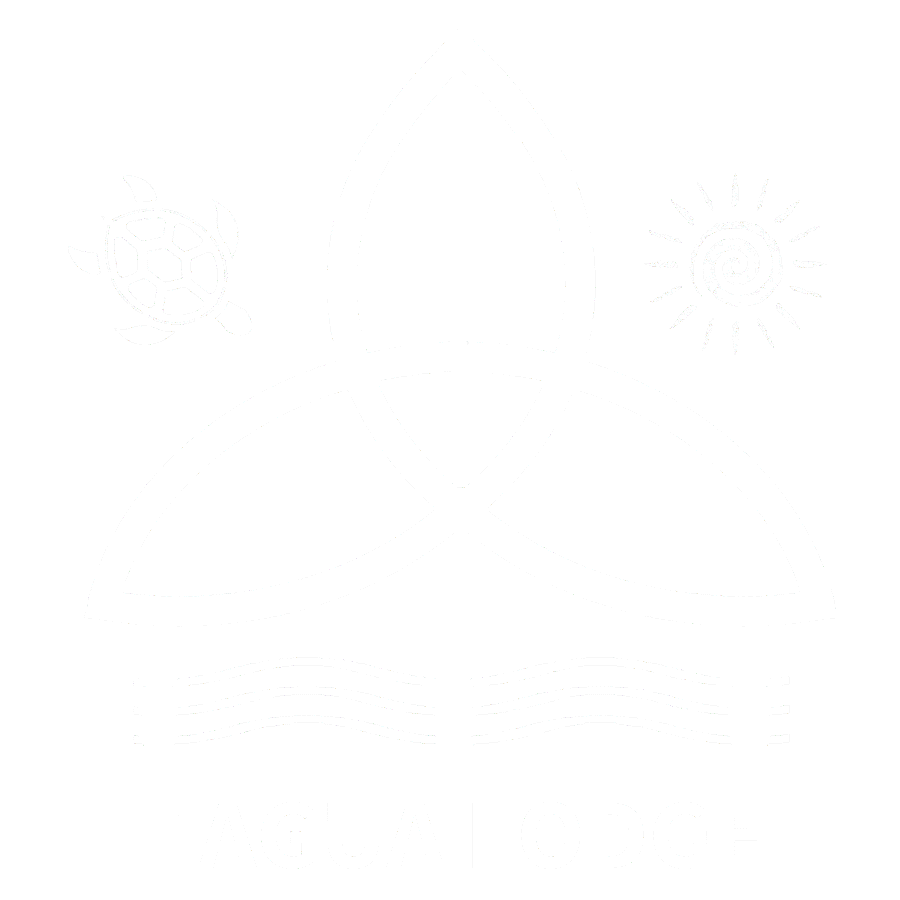 LogoFinalTranswhite